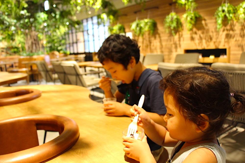 カワスイ 川崎水族館 カフェ こもれびカフェ レストラン 子連れ