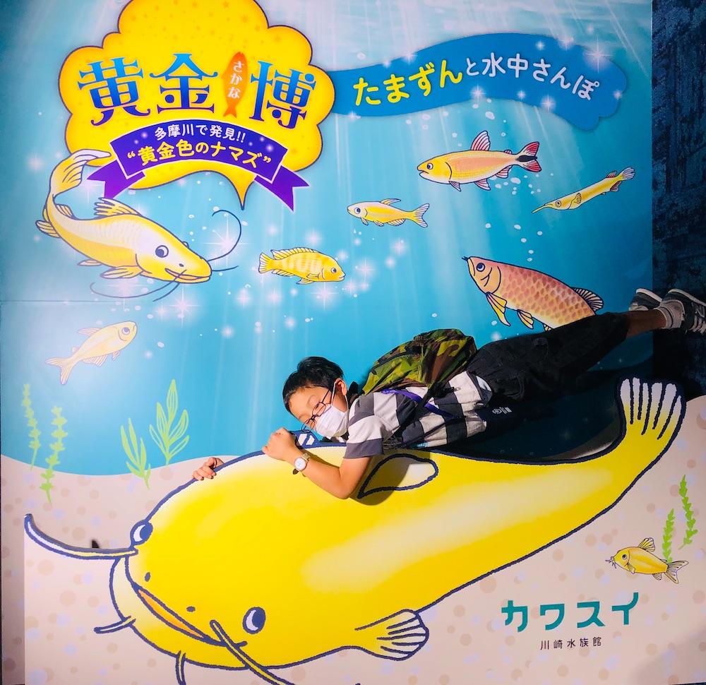 カワスイ 川崎水族館 水族館 川崎 子連れ お出かけ 子供連れ ナマズ たまずん