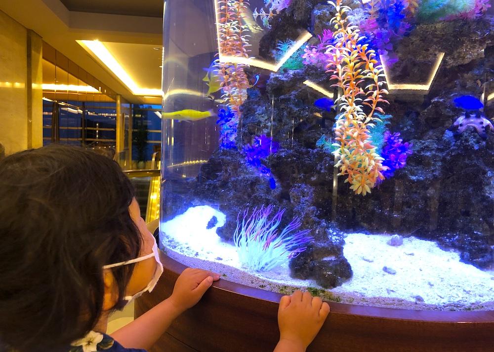 シェラトングランデ東京 シェラトン・グランデ・トーキョーベイ・ホテル シェラトン 子連れ マリオット 千葉 舞浜 オーシャンビュー 子連れ旅行 子連れ旅 家族旅行 マイクロツーリズム 客室 オアシス 室内遊び場 水槽 熱帯魚