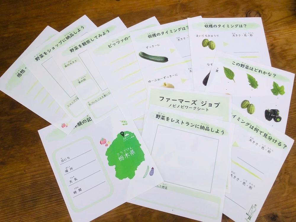 自由研究 小学生 小学生むけ 夏休みの自由研究 自由研究小学生 テーマ リゾナーレ那須 星野リゾート 野菜 収穫 農家体験 農家の仕事 ワークシート 1日で完成