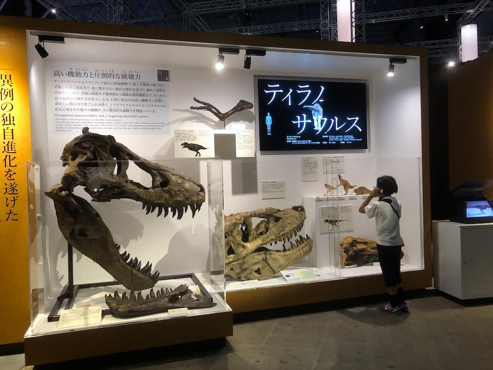DinoScience 恐竜科学博 ソニー ララミディア大陸 恐竜展 みなとみらい パシフィコ横浜 トリケラトプス 音声ガイド 化石