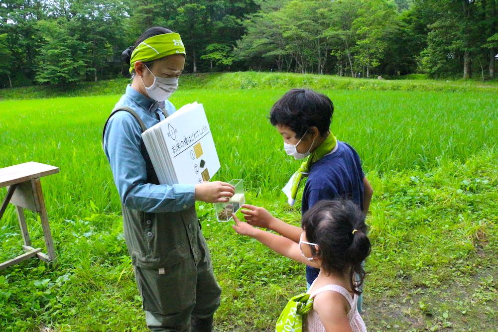 リゾナーレ那須 那須 星野リゾート 畑 田んぼ お米の学校 子連れ 家族旅行 夏休み