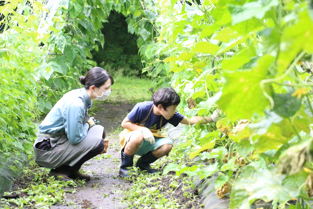 自由研究 小学生 小学生むけ 夏休みの自由研究 自由研究小学生 テーマ リゾナーレ那須 星野リゾート 野菜 収穫 農家体験 農家の仕事 アグリツーリズモリゾート