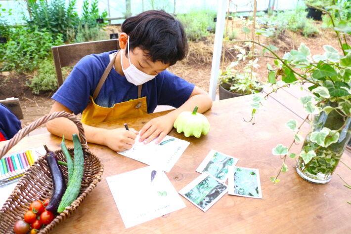自由研究 小学生 小学生むけ 夏休みの自由研究 自由研究小学生 テーマ リゾナーレ那須 星野リゾート 野菜 収穫 農家体験 農家の仕事