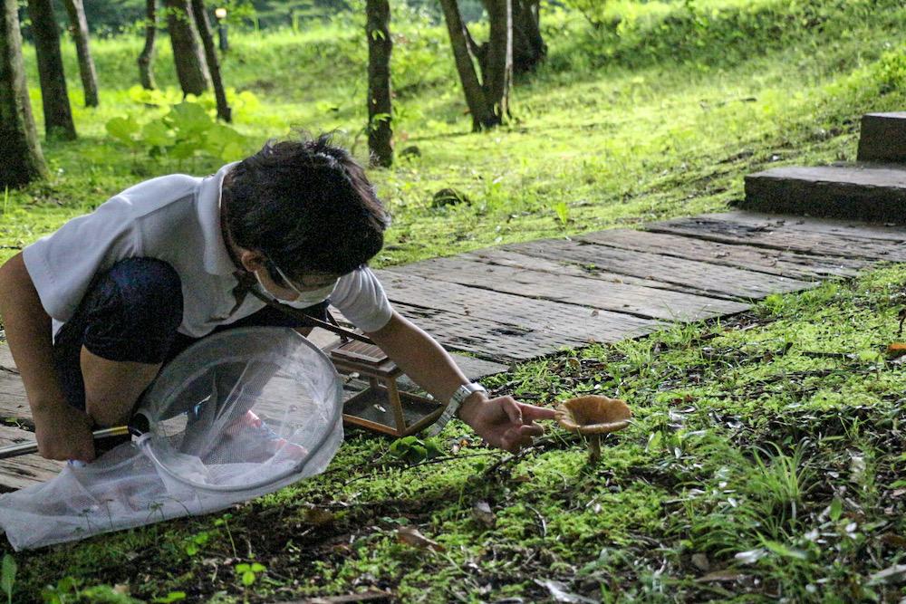星野リゾート リゾナーレ那須 那須 客室 虫探し 散策 散歩 虫取り 子連れ 家族旅行