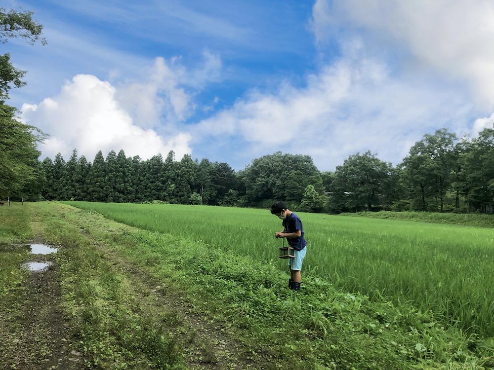 自由研究 小学生 小学生むけ 夏休みの自由研究 自由研究小学生 テーマ リゾナーレ那須 星野リゾート 野菜 収穫 農家体験 農家の仕事 虫探し 虫取り 虫捕り